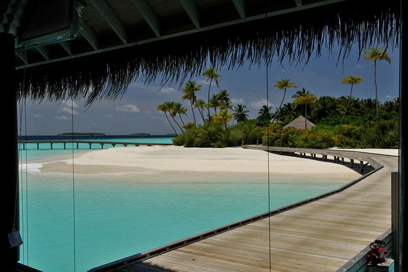 Maldives and Garbage Island
